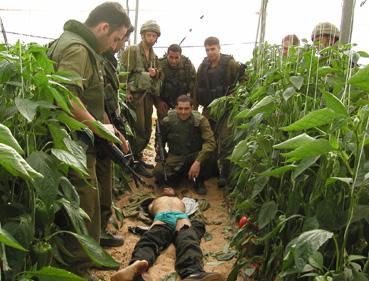 palestino muerto